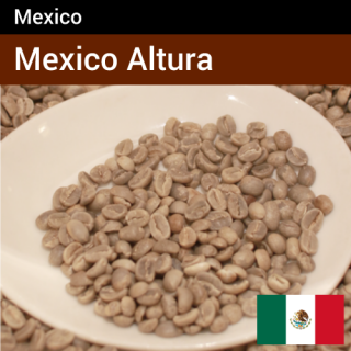 メキシコ アルトゥーラ