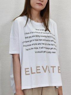 AGNOST (アグノスト) インパクト ロゴ ワイドTシャツ