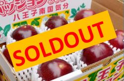 八王子パッションフルーツ(A品) ※2021年の販売は終了いたしました。