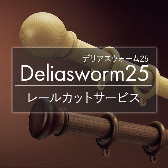 タチカワブラインド カーテンレール『デリアスウォーム25 レールカット』