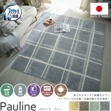 安心安全の日本製!ファブリーズライセンス 消臭・抗菌カーペット『ポリーヌ グレー』