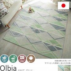 抗菌・防臭!安心の日本製デザインラグ『オルビア グリーン』