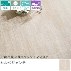 東リ クッションフロア『2.3mm厚 店舗用クッションフロア セルベジャンテ GS-4546CF』