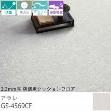 東リ クッションフロア『2.3mm厚 店舗用クッションフロア アラレ GS-4569CF』
