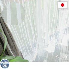 伸びやかに揺らぐウェーブ柄が美しい♪透け感のあるお洒落なボイルレースカーテン 『アリューム』
