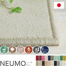 充実機能でずっと清潔に使える!柔らかな肌触りのカットパイル100サイズカーペット『ニューモ グレー』