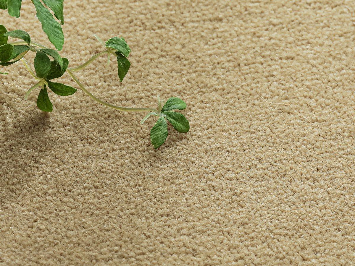 充実機能でずっと清潔に使える!柔らかな肌触りのカットパイルカーペット『ニューモ ピーナッツ』