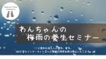 【10月3日(日)開催】秋の養生セミナー ※アーカイブ配信あり
