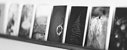 Giclee on Canvas / ジクレー印刷