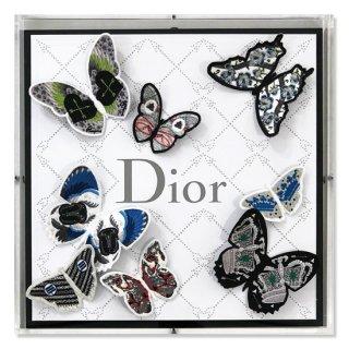 Dior Passion Flutter