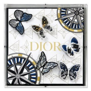 Dior Course Correction