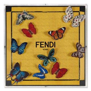 Fendi Flutter