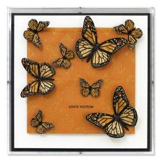 L.V. Monarchs