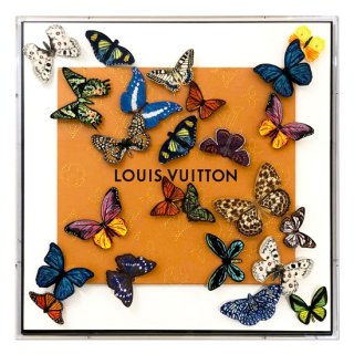 Louis Twenty-Four