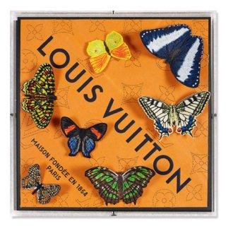 Louis Seven Variation
