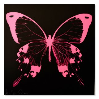 Pink Night Flyer