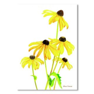 <img class='new_mark_img1' src='https://img.shop-pro.jp/img/new/icons14.gif' style='border:none;display:inline;margin:0px;padding:0px;width:auto;' />Yellow Black Eyed Susans