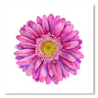 <img class='new_mark_img1' src='https://img.shop-pro.jp/img/new/icons14.gif' style='border:none;display:inline;margin:0px;padding:0px;width:auto;' />Pink Gerbera Daisy