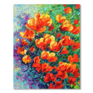 <img class='new_mark_img1' src='https://img.shop-pro.jp/img/new/icons14.gif' style='border:none;display:inline;margin:0px;padding:0px;width:auto;' />California Poppies