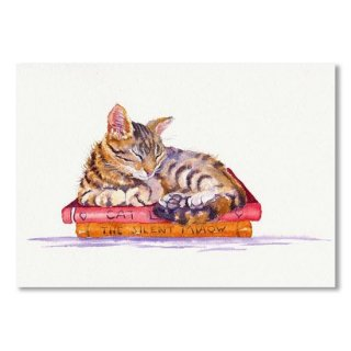 Sleeping Cat - Paperweight