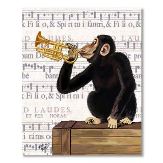 Monkey and Trumpet