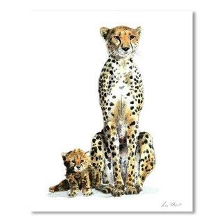 Cheetah Mom and Baby 1