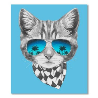 Cat with mirror sunglasses and scarf