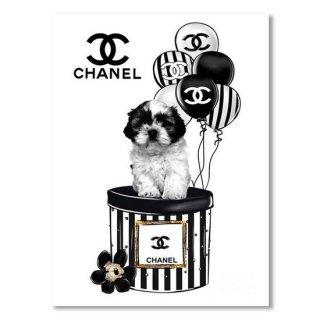 Chanel Dog And Ballon