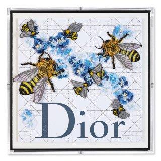 Dior Honey IX