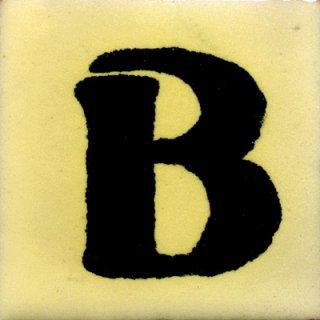 SB(50mm角)