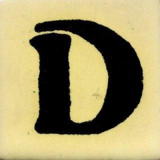 SD(50mm角)