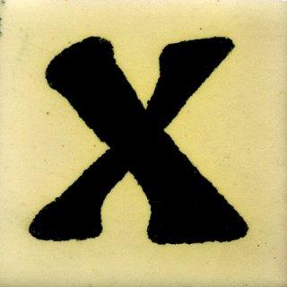 SX(50mm角)