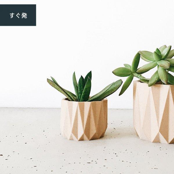 Origami / オリガミ
