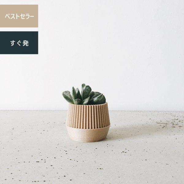Kobe / コウベ