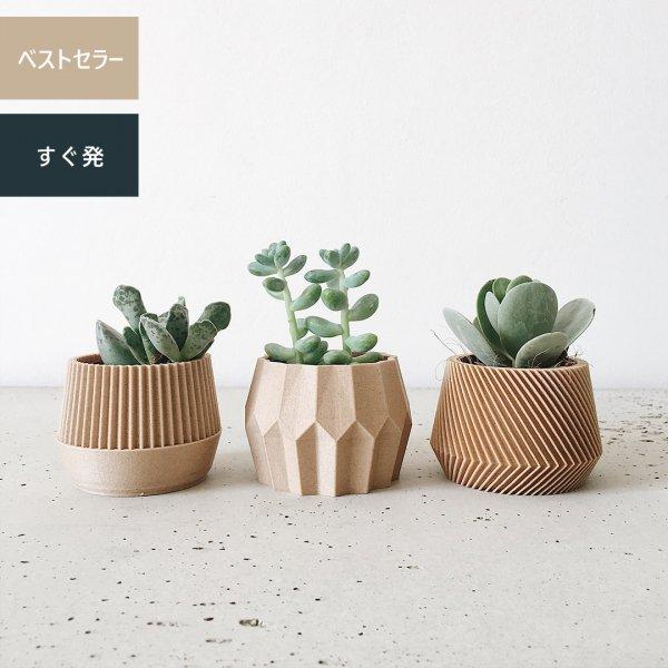 Set of 3 [5.5cm] Kobe Tokyo Oslo / 内径5.5cm プランター3個セット