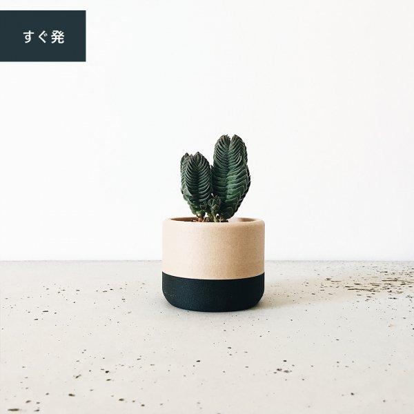 Ecotool / エコツール