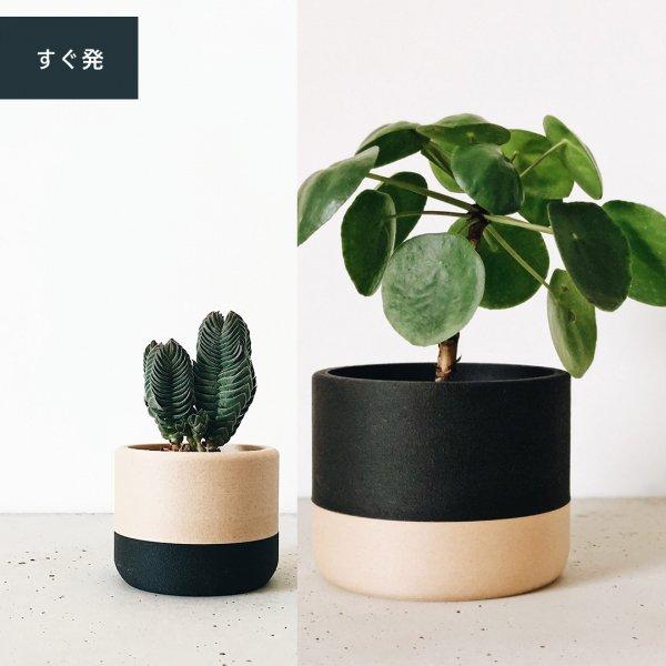 Two-tone Set of 2 [5.5cm] Ecotool | [8.5cm] Nairobi / ツートン プランター2個セット