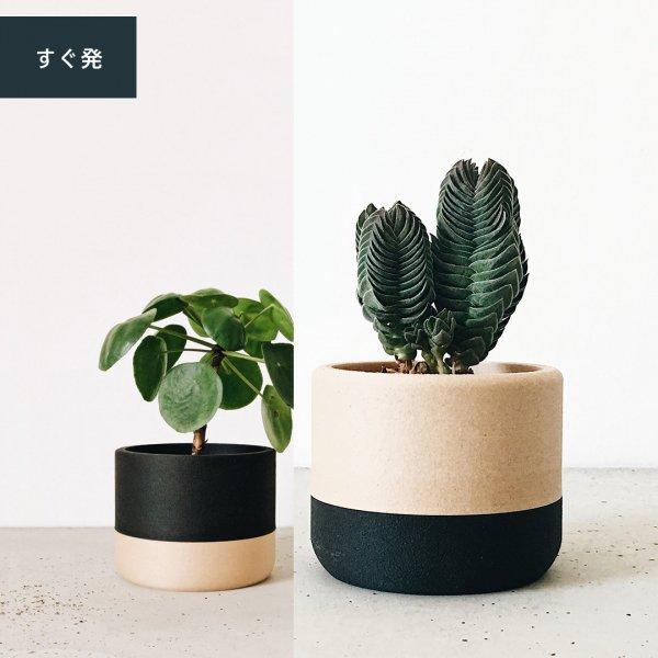 Two-tone Set of 2 [5.5cm] Nairobi | [8.5cm] Ecotool / ツートン プランター2個セット
