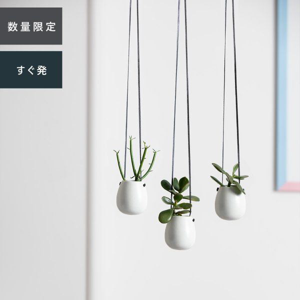 Hanging Pot ハンギングポット 3個セット