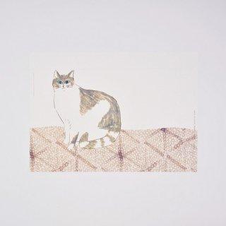 yosico ブックカバーになるイラストペーパー 壁ぎわの猫