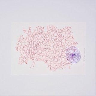 yosico ブックカバーになるイラストペーパー サンゴ