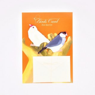 菊地絢女 BIRD CARD ブンチョウA