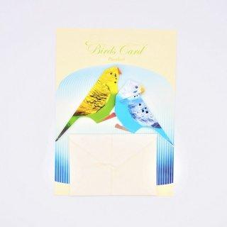 菊地絢女 BIRD CARD セキセイインコA