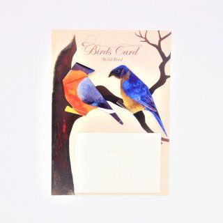 BIRD CARD 野鳥A ウソ&ルリツグミ