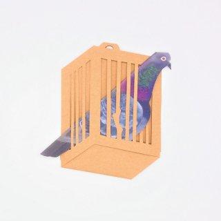 BIRD CARD 河原鳩A