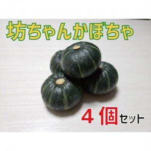 坊ちゃんかぼちゃ【4個】