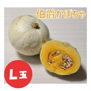 伯爵かぼちゃ L玉 1個
