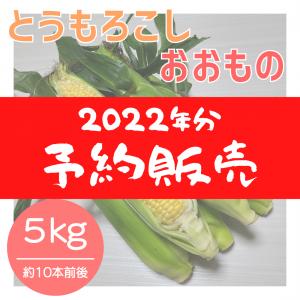 【2022年分】おおもの 約5kg