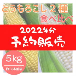 【2022年分】とうもろこし2種 食べ比べおまかせセット(5kg)