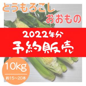 【2022年分】おおもの 約10kg